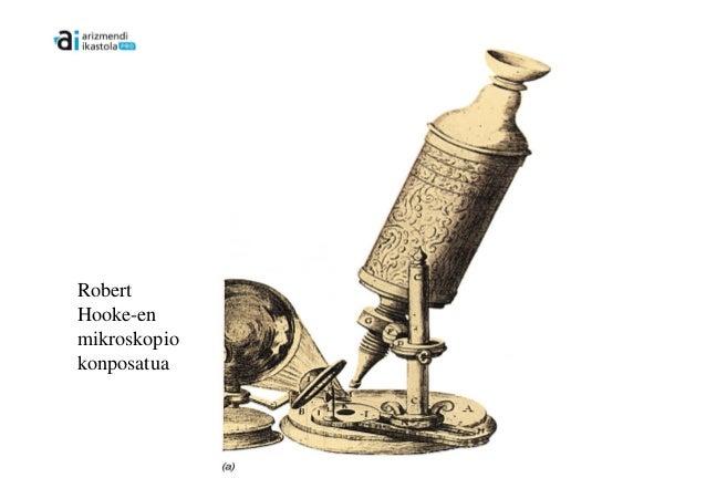 RobertHooke-enmikroskopiokonposatua