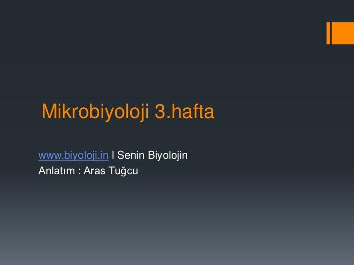 Mikrobiyoloji 3.haftawww.biyoloji.in l Senin BiyolojinAnlatım : Aras Tuğcu