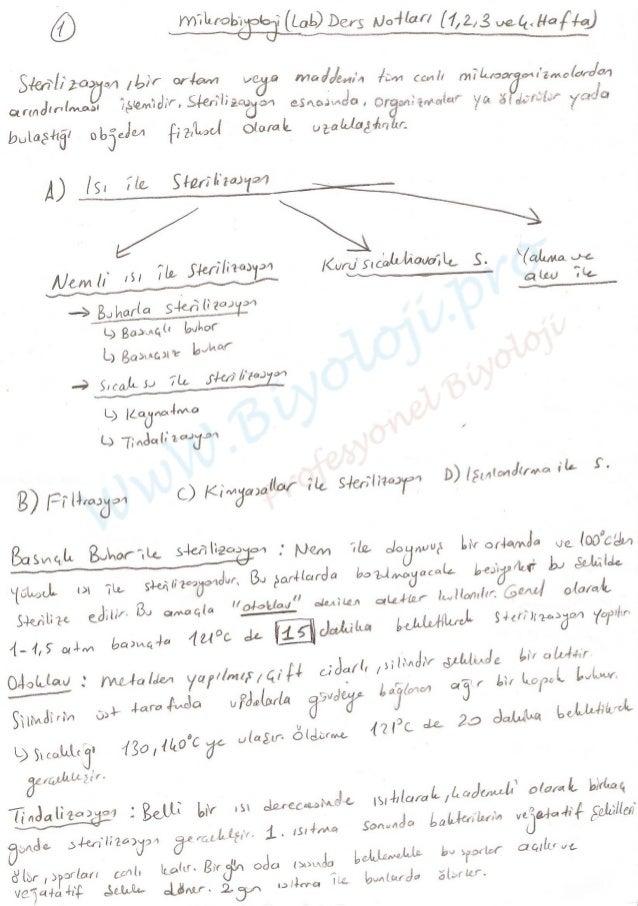 Mikrobiyoloji Laboratuvarı Ders Notları