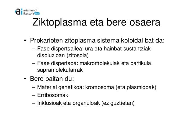 Mikroorganismoaen zitoplasma eta osaera Slide 2