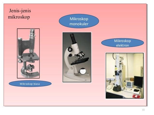Mikrobiologi metode pengamatan