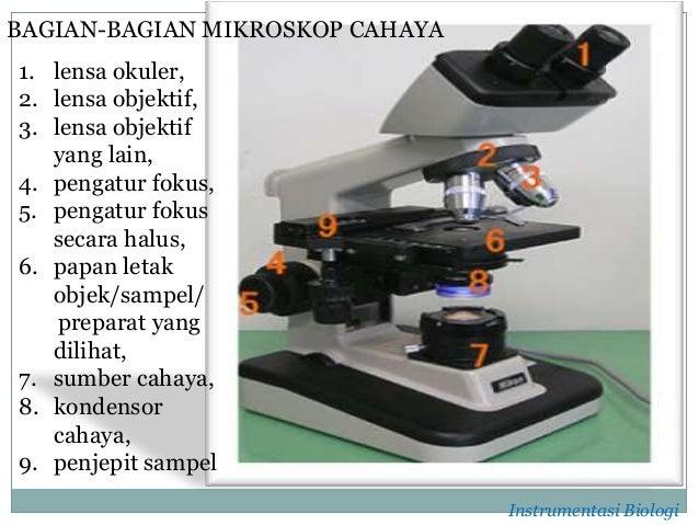 Bagian dari mikroskop cahaya penjelasan dan cara kerja mikroskop