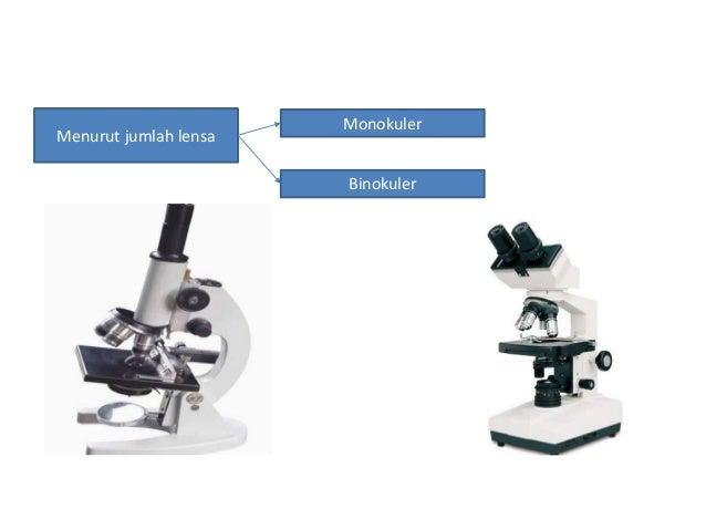 Bagian bagian dari mikroskop binokuler dan fungsinya jenis jenis