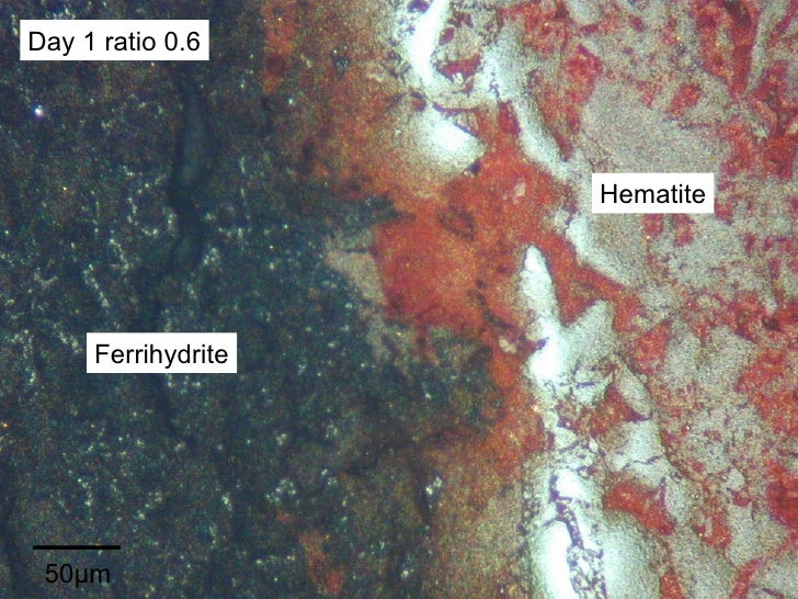 50µm Day 1 ratio 0.6 Hematite Ferrihydrite