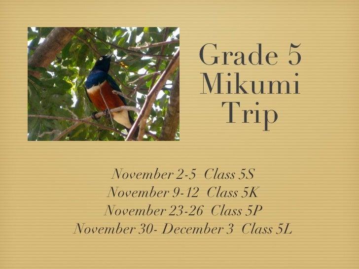 Grade 5 Mikumi Trip <ul><li>November 2-5  Class 5S </li></ul><ul><li>November 9-12  Class 5K </li></ul><ul><li>November 23...