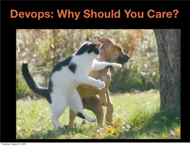 Devops: Why Should You Care?     Tuesday, August 3, 2010