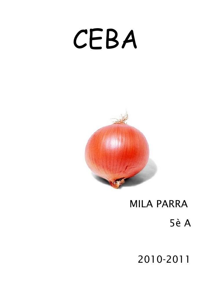 CEBA        MILA PARRA          5è A       2010-2011
