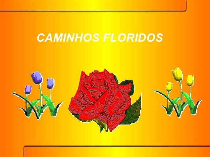 CAMINHOS FLORIDOS