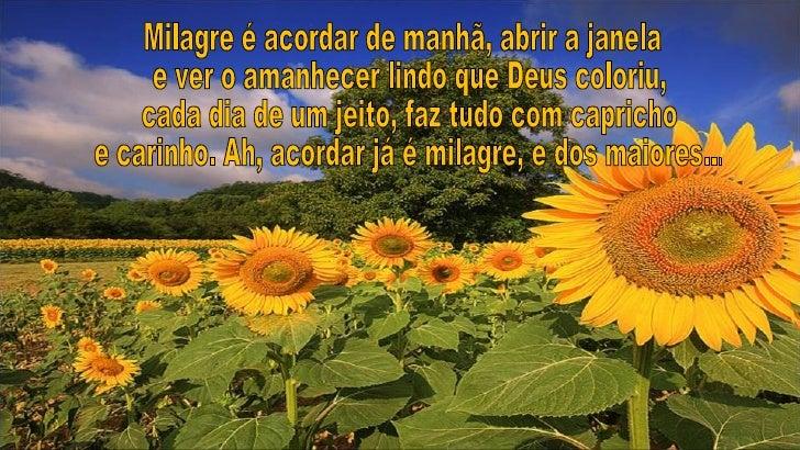 Milagres (1)