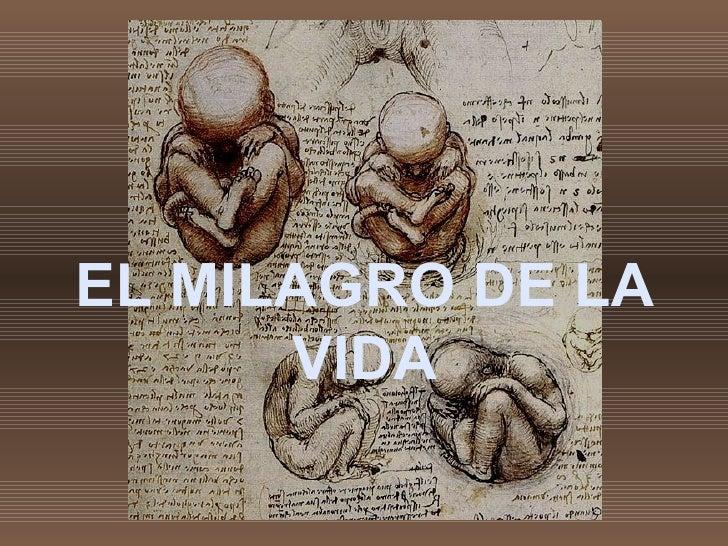 EL MILAGRO DE LA VIDA