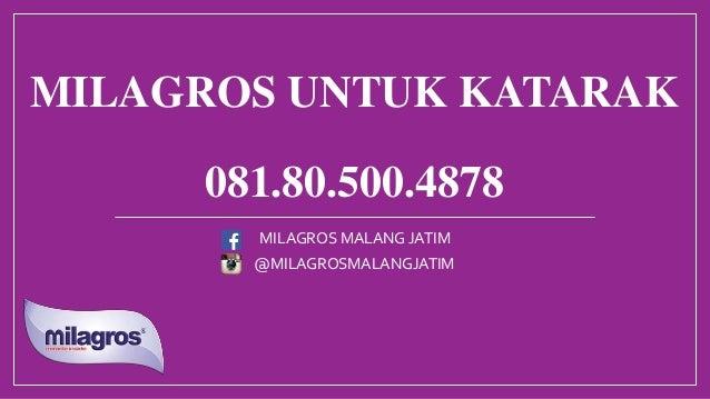 MILAGROS UNTUK KATARAK 081.80.500.4878 @MILAGROSMALANGJATIM MILAGROS MALANG JATIM