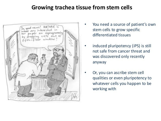 the two ethical commitments with the discovery of stem cells This page includes our position on stem cells  the r&d pipeline reflects our long-term commitment to driving change to  ethical implications of stem cell.
