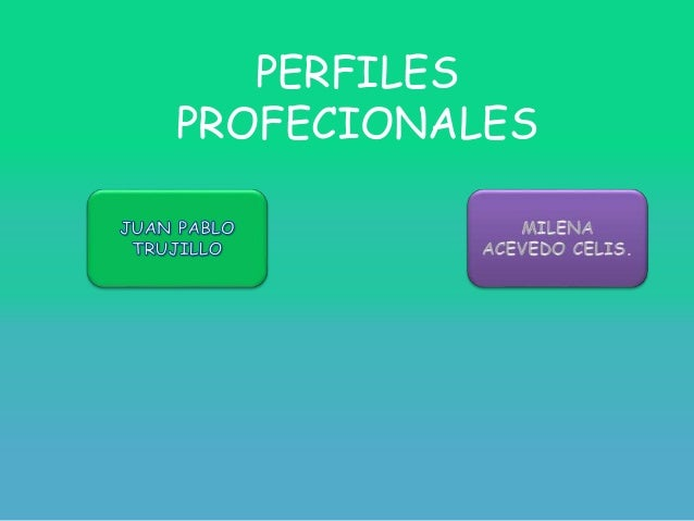 PERFILES PROFECIONALES