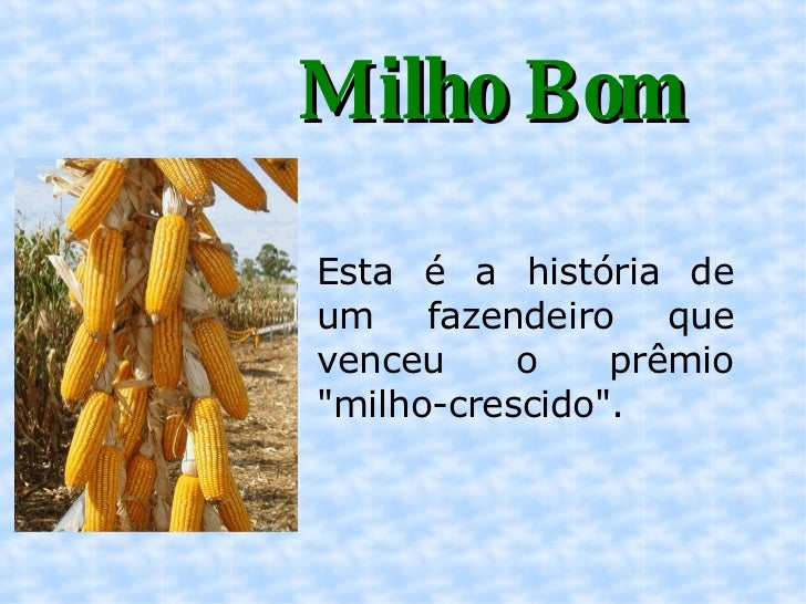 """Milho Bom Esta é a história de um fazendeiro que venceu o prêmio """"milho-crescido""""."""