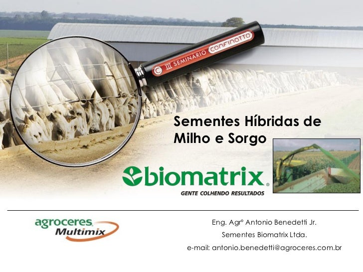 Sementes Híbridas deMilho e Sorgo       Eng. Agrº Antonio Benedetti Jr.          Sementes Biomatrix Ltda. e-mail: antonio....