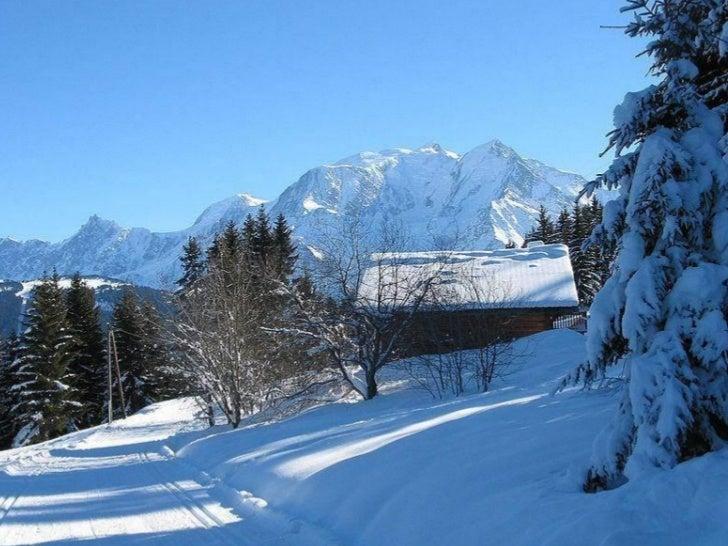 En résumé…» Zone Froide :     »   Désert polaire glacé, Toundra arctique     »   Hautes montagne» Zone tempérée :        ...