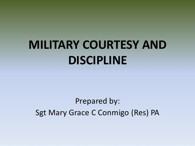 Standards and discipline in the army essay example
