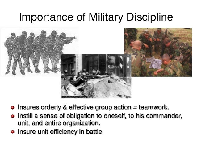 essay on why discipline is important in the army