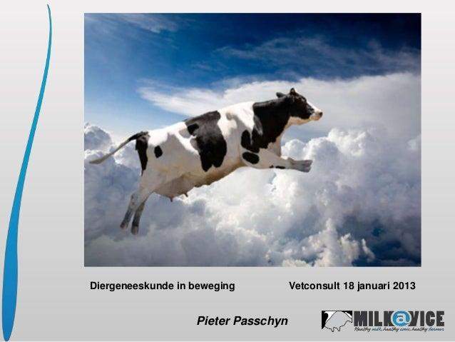Diergeneeskunde in beweging          Vetconsult 18 januari 2013                   Pieter Passchyn