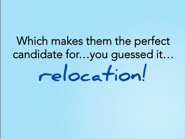 Which makes them the perfect candidate for…you guessed it… relocation!