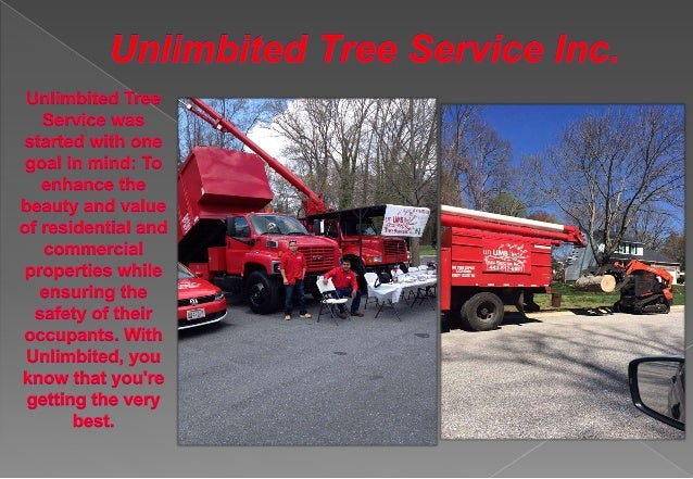unLIMBited Tree Service Inc. P.O. Box 215 Glen Burnie, MD 21060-0215 info@unlimbitedtreeservice.com Call Us Today! (443) 5...