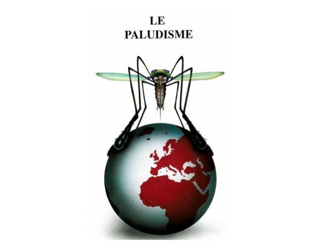 Paludisme: 700,000-2.7 millions de morts/an                          400-900 millions                          Cas fébrile...