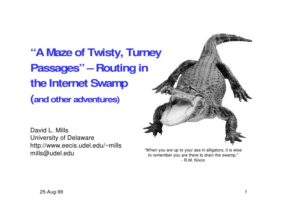 """A Maze of Twisty, Turney Passages"" – Routing in the Internet Swamp (and other adventures)  David L. Mills University of D..."