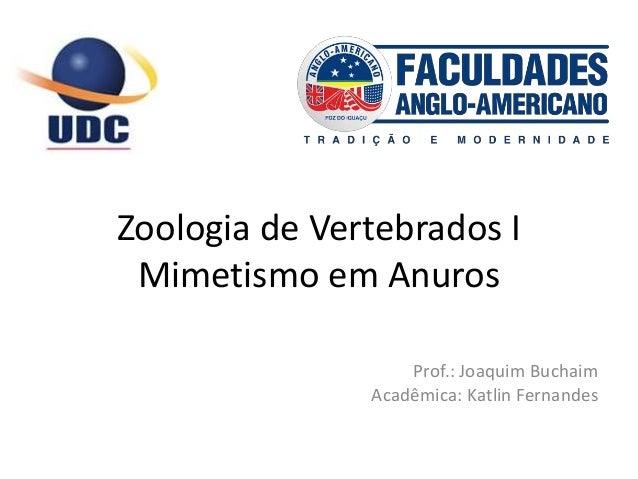 Zoologia de Vertebrados I Mimetismo em Anuros Prof.: Joaquim Buchaim Acadêmica: Katlin Fernandes