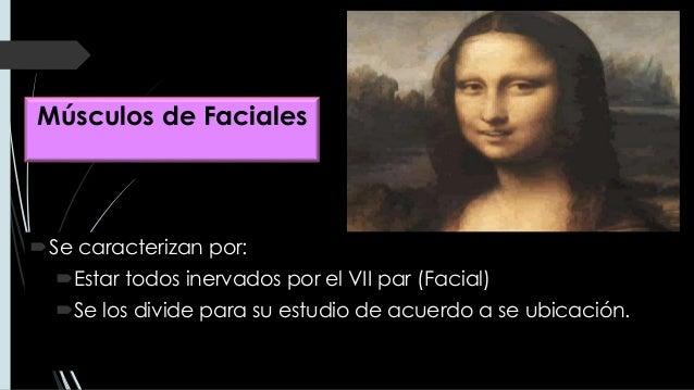 MÚSCULOS FACIALES  Slide 3