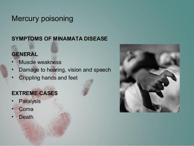 minamata mercury pollution disaster essay Minamata mercury pollution 1 minamata college prep: writing a strong essay minamata disaster sidhaarth bt.