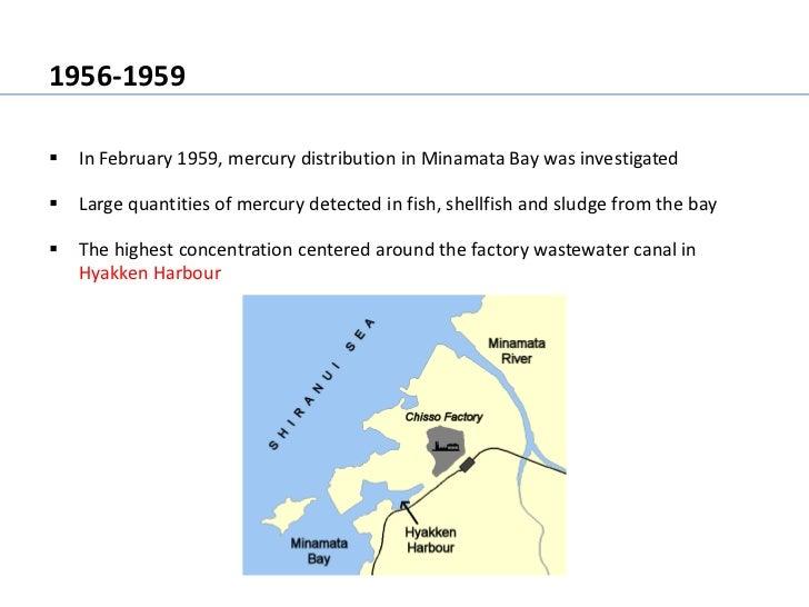 Minamata mercury pollution for Fish without mercury