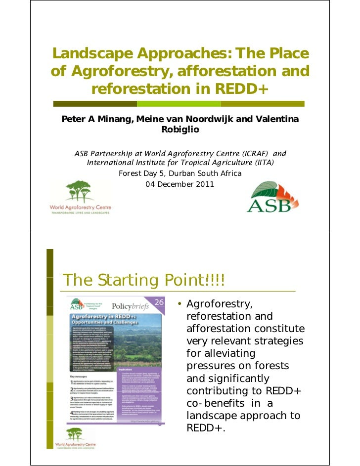 Landscape Approaches: The Placeof Agroforestry, afforestation and   Agroforestry     reforestation in REDD+ Peter A Minang...