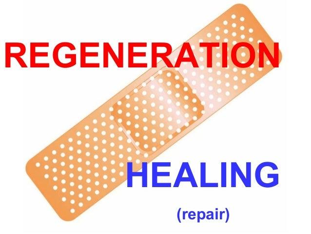 REGENERATION HEALING (repair)