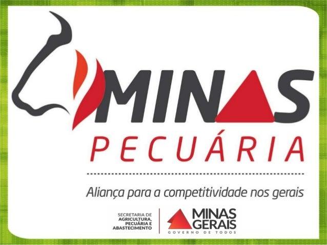 Pecuária Bovina em Minas Gerais 1º  Rebanho de vacas ordenhadas do Brasil, com 5,8 milhões de cabeças. (25,2% MG/BR)  Pr...