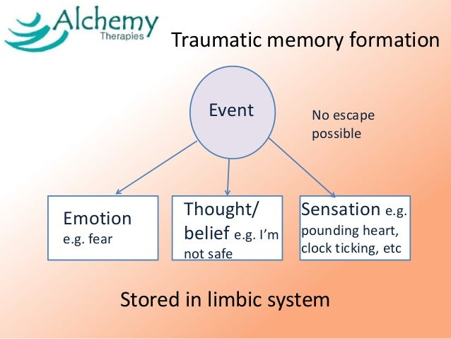 "a survivor recollection of the trauma caused by the holocaust Epigenetics, pregnancy and the holocaust: genetic literacy project study in an article titled ""study of holocaust survivors finds trauma passed on to."