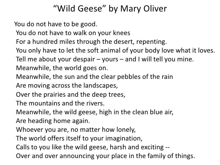 mary oliver wild geese