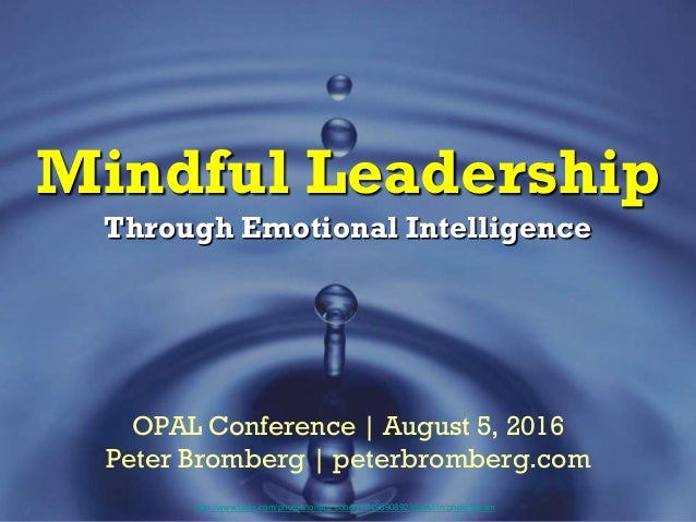 Mindful Leadership Through Emotional Intelligence http://www.flickr.com/photos/tomas_sobek/4649690892/sizes/l/in/photostre...