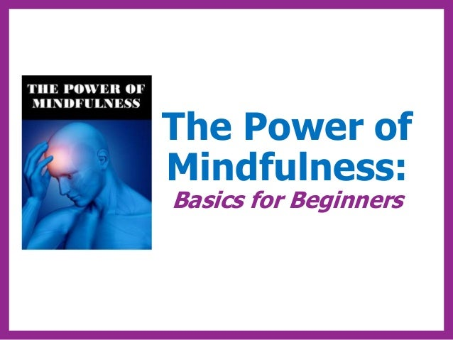 The Power of Mindfulness: Basics for Beginners