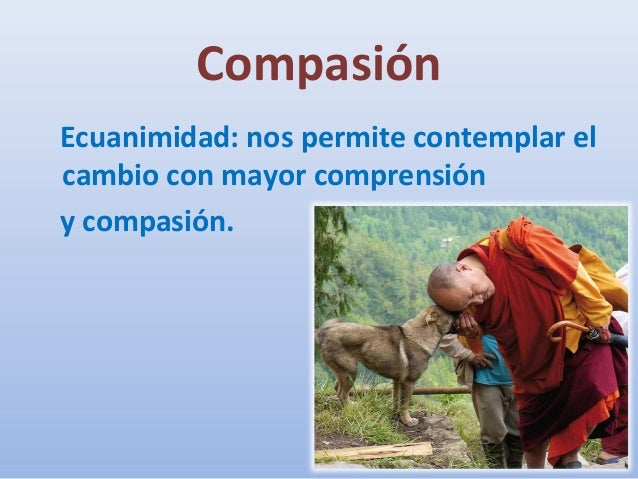 compasion essay We live in a world lacking in compassion the sad reality of humanity is that the  vast majority of people ignore the suffering of others perhaps.