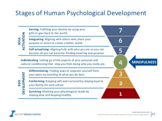 Powerful metrics that enable leaders to measure and manage cultures.www.valuescentre.com23Stages of Human Psychological De...