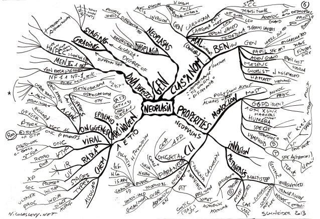 Mind maps pathology neoplasia