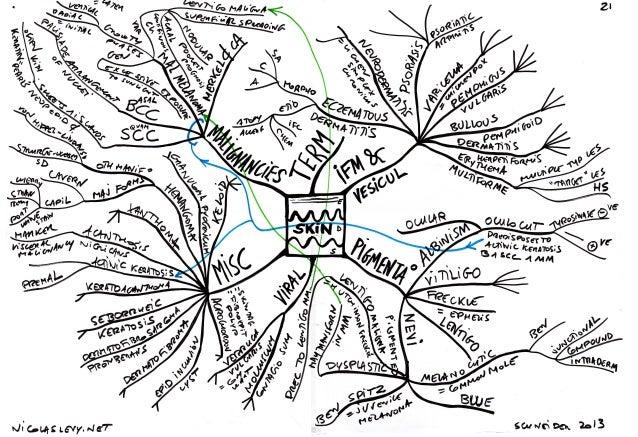 Mind maps pathology skin