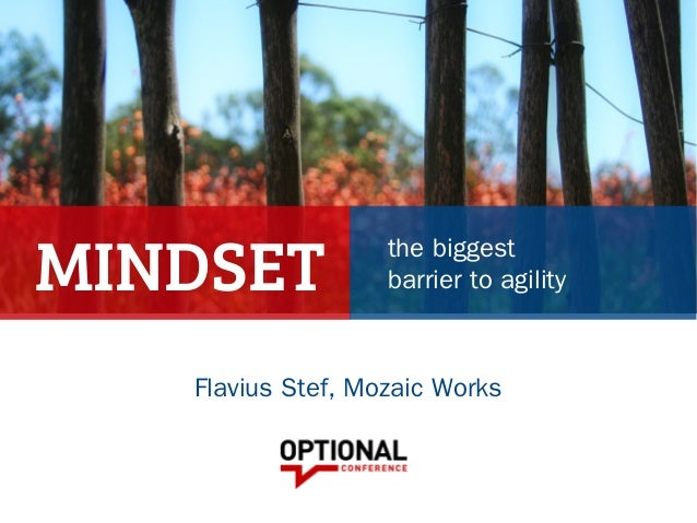 MINDSET the biggest barrier to agility Flavius Stef, Mozaic Works