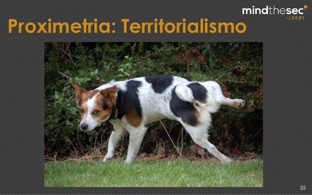 Proximetria: Territorialismo 35