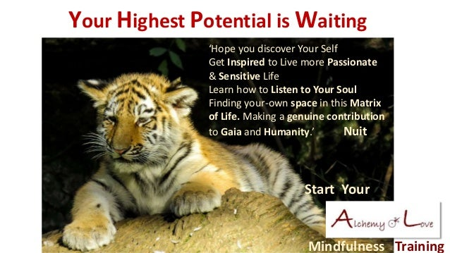 Mindfulness Training Your Highest Potential is Waiting Start Your 'Hope you discover Your Self Get Inspired to Live more P...