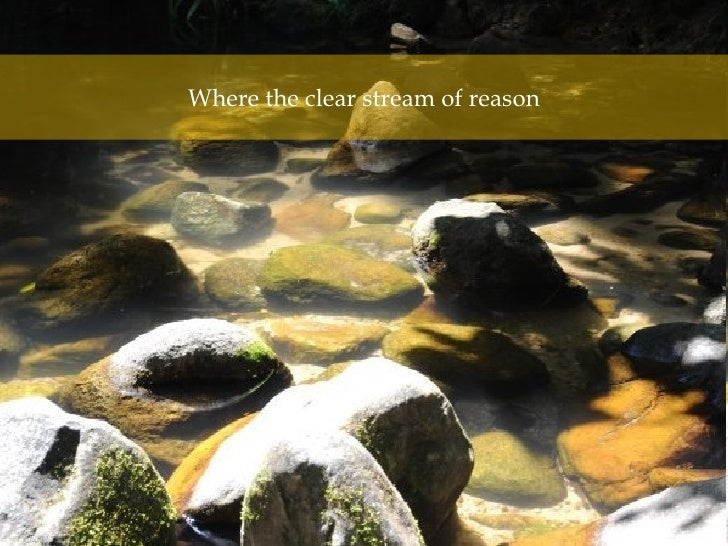Where the clear stream of reason