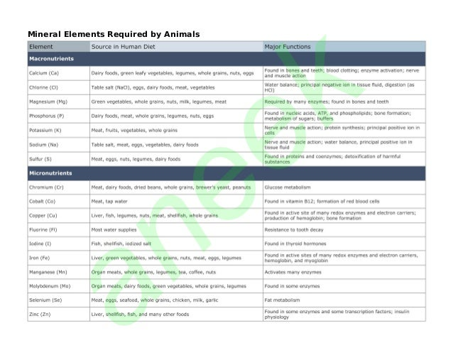 an  ee  k  Mineral Elements Required by Animals