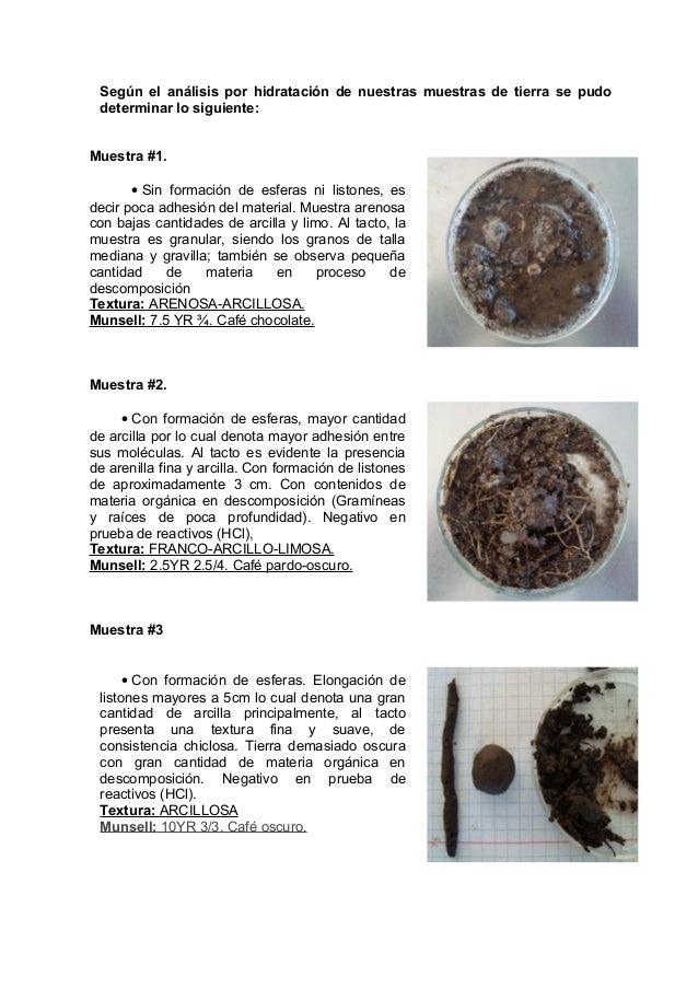 Minerales y color del suelo for Muestras color arena