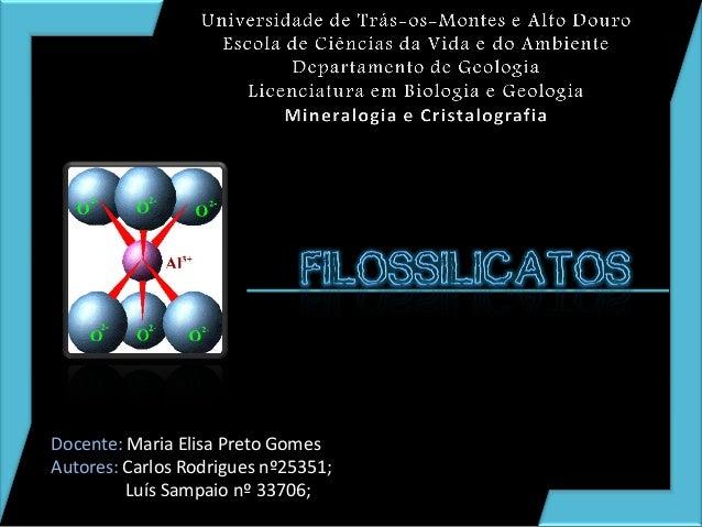 Docente: Maria Elisa Preto Gomes Autores: Carlos Rodrigues nº25351; Luís Sampaio nº 33706;