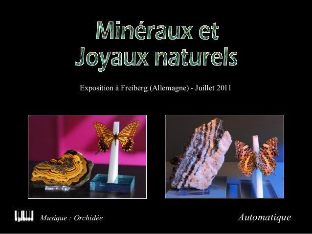 Exposition à Freiberg (Allemagne) - Juillet 2011  Musique : Orchidée  Automatique